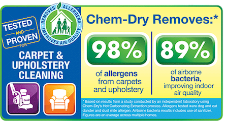 Tropical Chem-Dry technician providing professional upholstery cleaning services